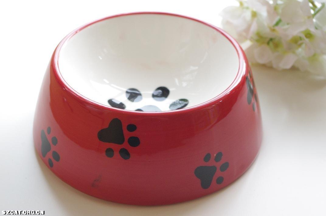 外贸手绘陶瓷 猫碗-东门老街-中国动物关爱联网(aac)